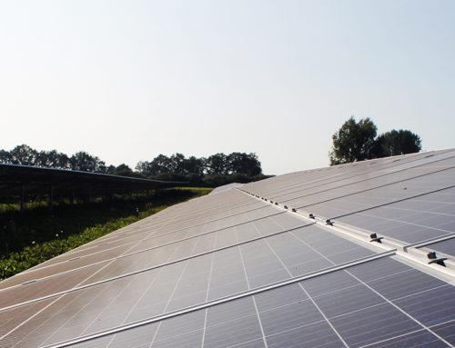 Inbetriebnahme Solarpark Wachtum (NL)